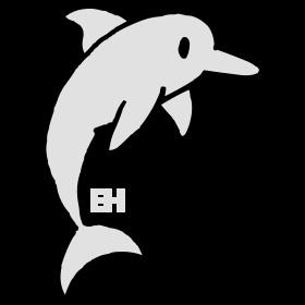Dolphin bc