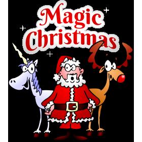 Magic Christmas with a unicorn fc