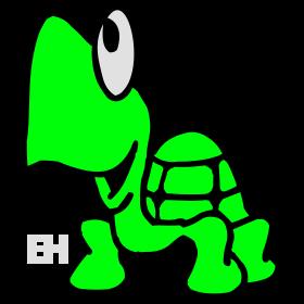 Turtle bc